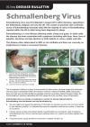 Schmallenberg Disease Factsheet